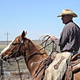 Bryan Neubert - La Noblesse du Cowboy